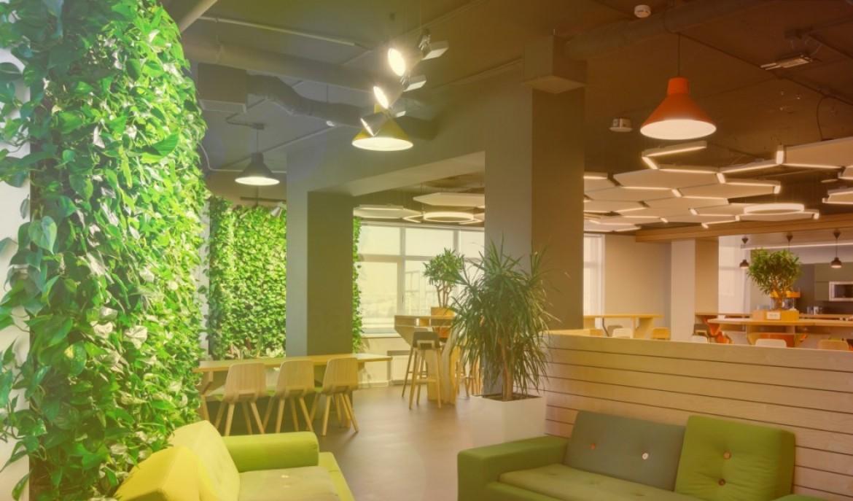 Žaliosios zonos biure